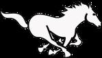 horse-311254_640